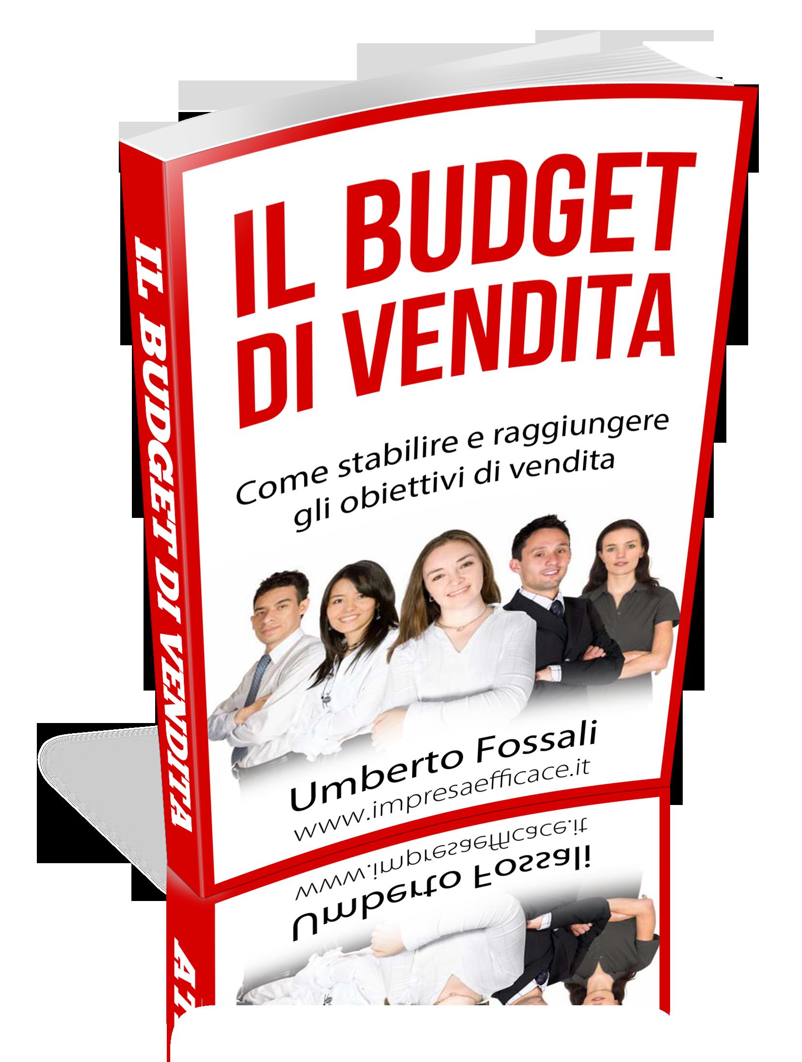 budget di vendita